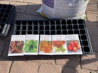 Lettuce Tomato seeds.JPG